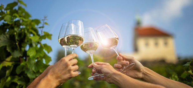 Vinobraní v památkově chráněné vinici sv. Kláry. Čeká vás svátek vína s nejkrásnějším výhledem na Prahu