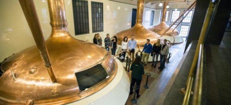 Dny českého piva v Plzeňském Prazdroji: Díky architektonickým procházkám nahlédnete do zákulisí pivovaru