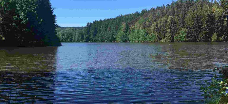 Opravdová divočina v Čechách